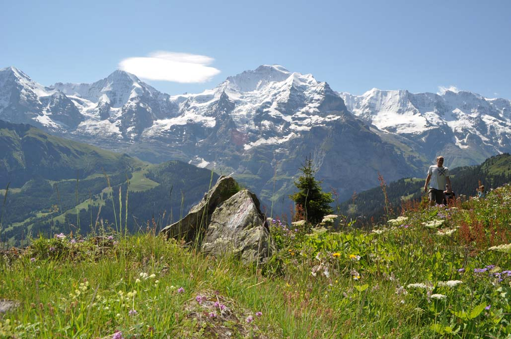Sommer wandern panorama marchegg